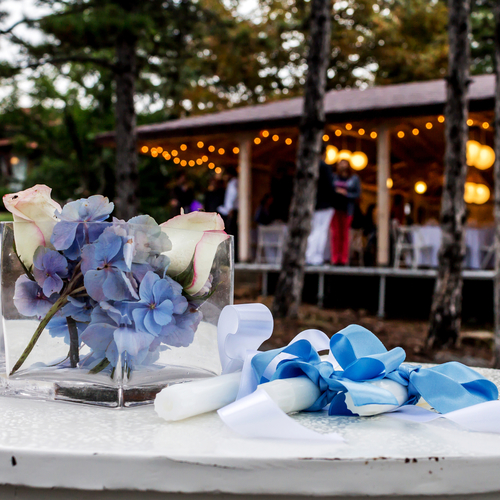 Enjoy a mosquito-free outdoor wedding with Skeeter Patrol 1